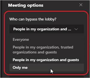 Meeting Options 2