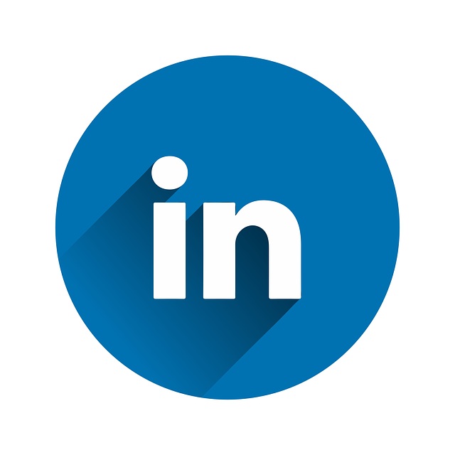 Linked In logo