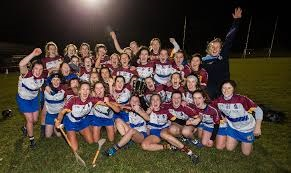 Ashbourne and Fitzgibbon Cup wins
