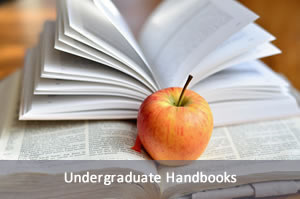 Picture of apple on a stack of books. Link to undergraduate handbooks.
