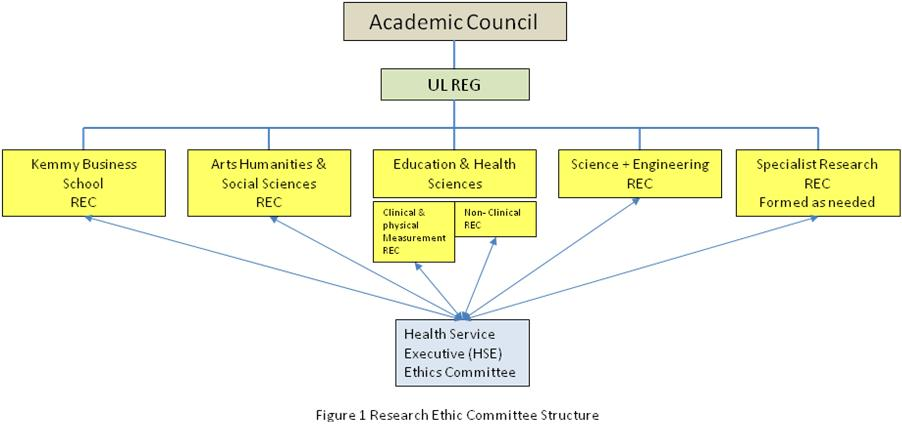 Research Ethics Committee Structure