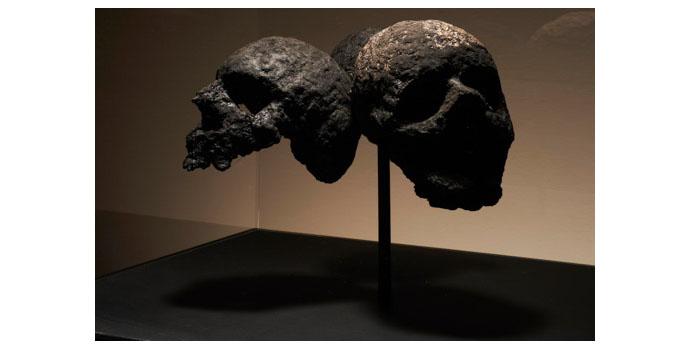 Michael Canning, Self Portrait: Three skulls 2012. Mixed media, paper pulp, acrylic box, steel and MDF 137.2 x 60 x 52 cm, NSPCI.2012.461.