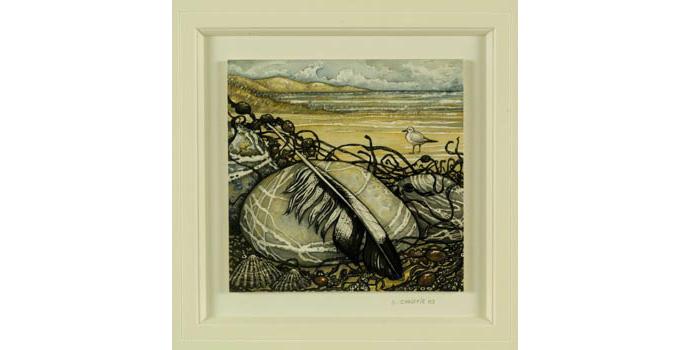 Betty Christie, Solitary Seagull, Murlough Co.Down 2003. Watercolour on card, 15.3 x 15.3 cm, WCSAI 2004