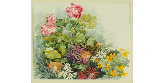 Myra Maguire (1928-), Summertime, 1993. Watercolour on paper, 43 x 54.5 cm, WCSI.1993
