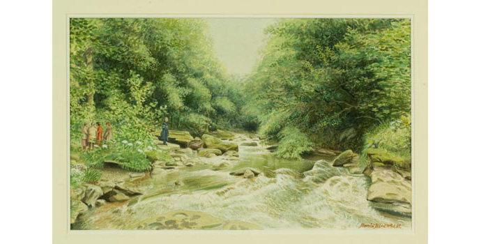 Harold Bird (1922-), Clare River Falls, Slievefelim Mountains, 1991. Watercolour and indian ink on paper, 31 x 50cm WCSI.1991